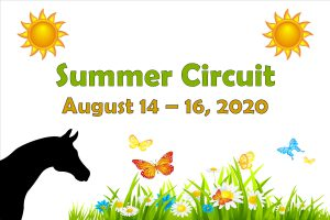 Area 3 Summer Circuit Show